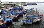 Bình Thuận chủ động ứng phó với áp thấp nhiệt đới