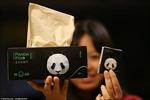 Trung Quốc sản xuất giấy vệ sinh từ phân gấu trúc