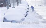 Canada hủy nhiều sự kiện mừng Năm mới vì thời tiết cực lạnh