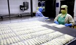 Xuất khẩu thủy sản lần đầu tiên cán mốc 8 tỷ USD