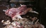 Bình Dương phát hiện điểm giết mổ động vật trái phép