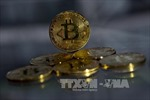 Đồng Bitcoin rớt giá thảm hại