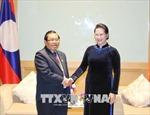 Vun đắp mối quan hệ hữu nghị, đoàn kết và hợp tác toàn diện Việt Nam-Lào