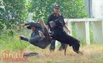 Xem chó nghiệp vụ trấn áp tội phạm của Công an Thành phố Hồ Chí Minh
