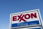 Ngành năng lượng thận trọng dù giá dầu phục hồi