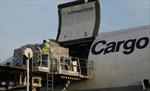 Nhóm trộm khoắng sạch 5 triệu USD trên máy bay chỉ trong 6 phút