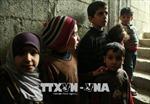 Các bên tham chiến 'phớt lờ' lệnh ngừng bắn tại Syria