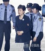 Phản ứng của các đảng về phán quyết đối với cựu Tổng thống Park Geun-hye