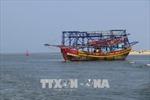 Quảng Trị nạo vét khẩn cấp cửa biển bị bồi lấp