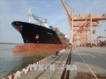 Chi nhánh Cảng Tân Vũ đón tàu container lớn nhất từ trước đến nay