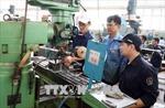 Hiểu thị trường lao động để tăng năng suất
