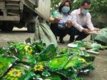 Thu giữ 3 tấn thuốc bảo vệ thực vật nhập lậu từ Trung Quốc