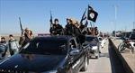 Iraq tiêu diệt thủ lĩnh tuyên truyền của IS tại Syria