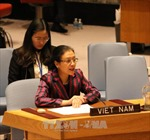 Việt Nam nhấn mạnh nghĩa vụ giải quyết tranh chấp bằng biện pháp hòa bình