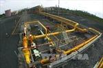 Sự cố tại Trạm tiếp bờ của Công ty khí Cà Mau đã được khắc phục