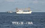 Bình Thuận hoàn thiện đội tàu công suất lớn, đánh bắt xa bờ
