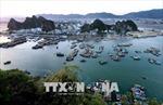 Tuần qua: Sẽ trình Quốc hội lùi thông qua luật về đặc khu, cựu giám đốc bệnh viện Hoà Bình đã về Việt Nam