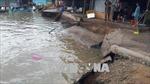 Sạt lở đất trong đêm ở Cà Mau, 3 căn nhà bị nhấn chìm