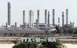 Ấn Độ, Trung Quốc thúc đẩy thành lập khối các nước nhập khẩu dầu mỏ