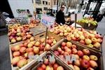 Nông sản Mỹ mất giá do lo ngại cuộc chiến thương mại với Trung Quốc