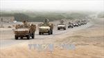 Các lực lượng Yemen bắt đầu tiến vào sân bay Hodeidah