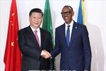 Chuyến công du và chiến lược ngoại giao đa dạng, thực dụng của Trung Quốc