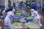 Xúc tiến thương mại cho sản phẩm, ngành hàng có tiềm năng xuất khẩu