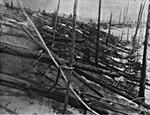 Bí ẩn thế kỷ về vụ nổ 'siêu khủng' xoá sổ 80 triệu cây cối ở Siberia, Nga