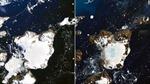 Nóng thiêu đốt Nam Cực, làm tan chảy 20% tuyết trên đảo