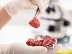 Singapore chính thức cấp phép bán 'thịt nuôi cấy' trong phòng thí nghiệm