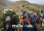 Điện thăm hỏi về tình hình động đất xảy ra tại Indonesia