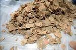 'Khui' container tại Cảng Tiên Sa, phát hiện 6 tấn vảy tê tê và 2 tấn ngà voi