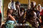 Số người đói ăn tỷ lệ thuận với mức tăng của nhiệt độ trái đất