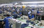 EC trình thông qua thỏa thuận FTA với Việt Nam
