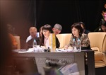Việt Nam đóng góp tích cực về các ưu tiên hợp tác của Năm APEC 2018