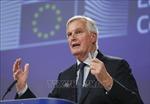 Trưởng đoàn đàm phán EU đề xuất kéo dài thời kỳ chuyển đổi Brexit