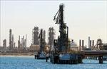Giá dầu thô Mỹ giảm xuống dưới 50 USD/thùng