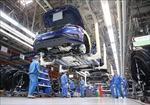 Volkswagen tiếp tục gặp rắc rối tại Mỹ