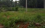 Dự án về y tế ở Vĩnh Phúc sau 6 năm khởi công vẫn bạt ngàn cỏ dại