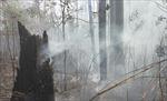 Liên tiếp xảy ra cháy rừng tại khu vực núi Minh Đạm, Bà Rịa - Vũng Tàu