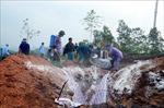 Tuyên Quang phát hiện thêm 2 ổ dịch tả lợn châu Phi