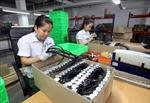 CH Czech tăng cường hợp tác thương mại với Việt Nam