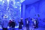 Công viên thủy cung cao nhất thế giới mở cửa đón khách