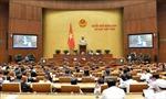 Kỳ họp thứ 8 Quốc hội khóa XIV: Thông cáo báo chí số 17