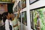 Triển lãm 'Campuchia - Vương quốc văn hóa'tại Việt Nam