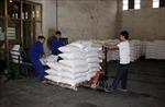 Khôngtổ chức Phiên đấu giá hạn ngạch thuế quan nhập khẩu đường năm 2020