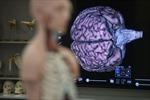 Singapore thành lập Ngân hàng não đầu tiên