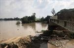 Báo động sạt lở ở Đồng bằng sông Cửu Long - Bài 1: Sạt lở ngày càng nghiêm trọng
