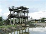 Đồng bằng sông Cửu Long có nguy cơ bị hạn, mặn nghiêm trọng