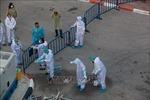 850 ca nhiễm, Thủ tướng Ai Cập nhận định dịch COVID-19 'chưa đáng báo động'